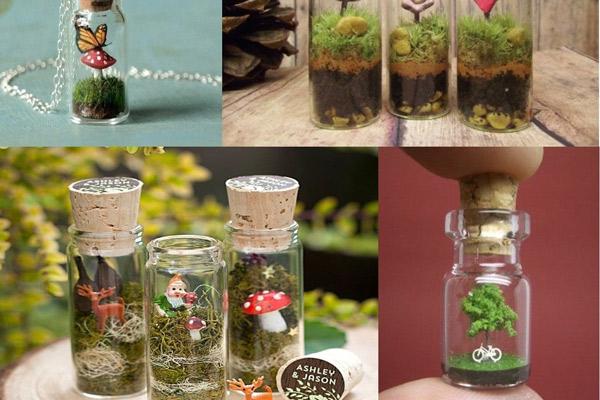 Recuerdos de matrimonio con plantas y botellas